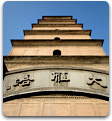 Mandarin Chinese immersion day trip-Big Wild Goose Pagoda